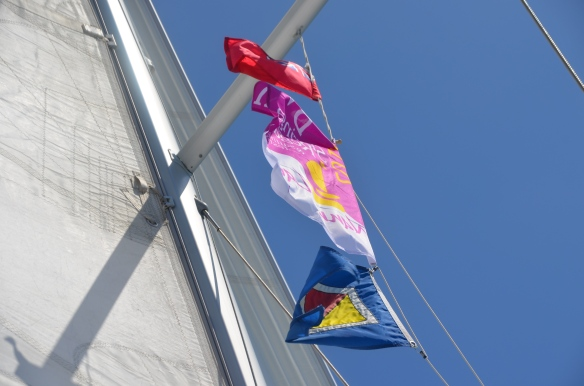 POYC burgee and the official flags of BVI and the BVI Regatta.
